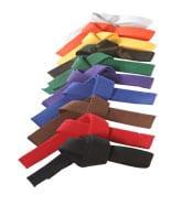 belts_page